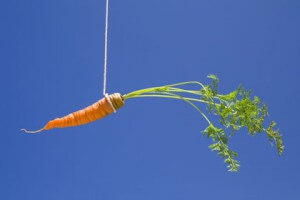 A_hanging_carrot
